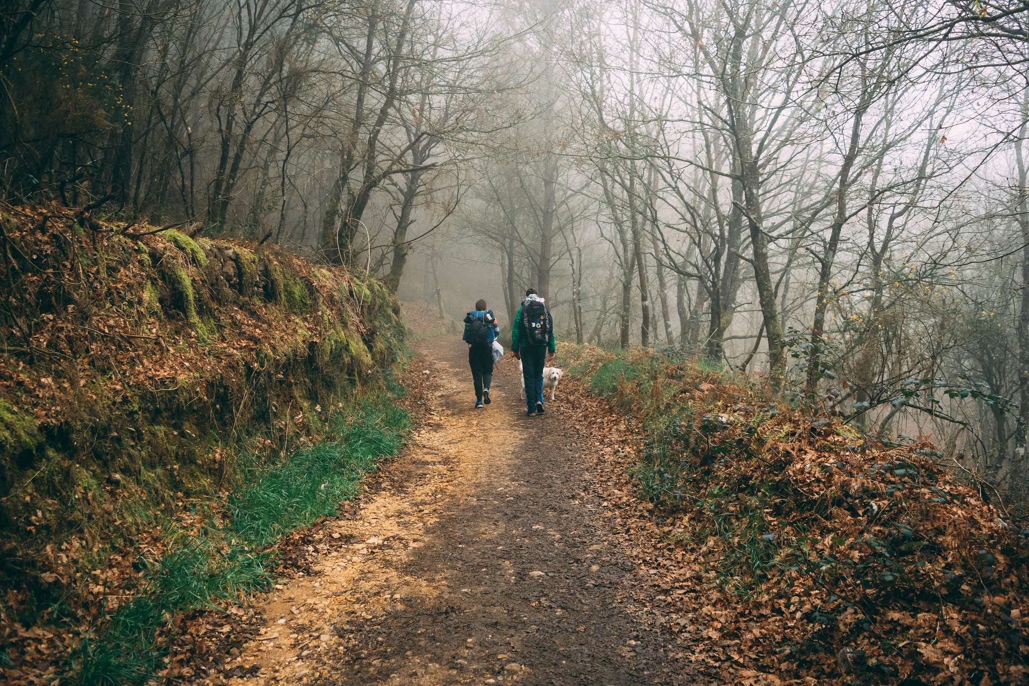 Caminantes en Galicia en invierno