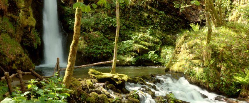Cascadas de Galicia: Semeira de Vilagocende