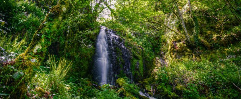 Espacios naturales de Lugo: Sierra de los Ancares