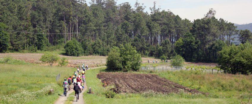 Una de las rutas ciclistas por Galicia