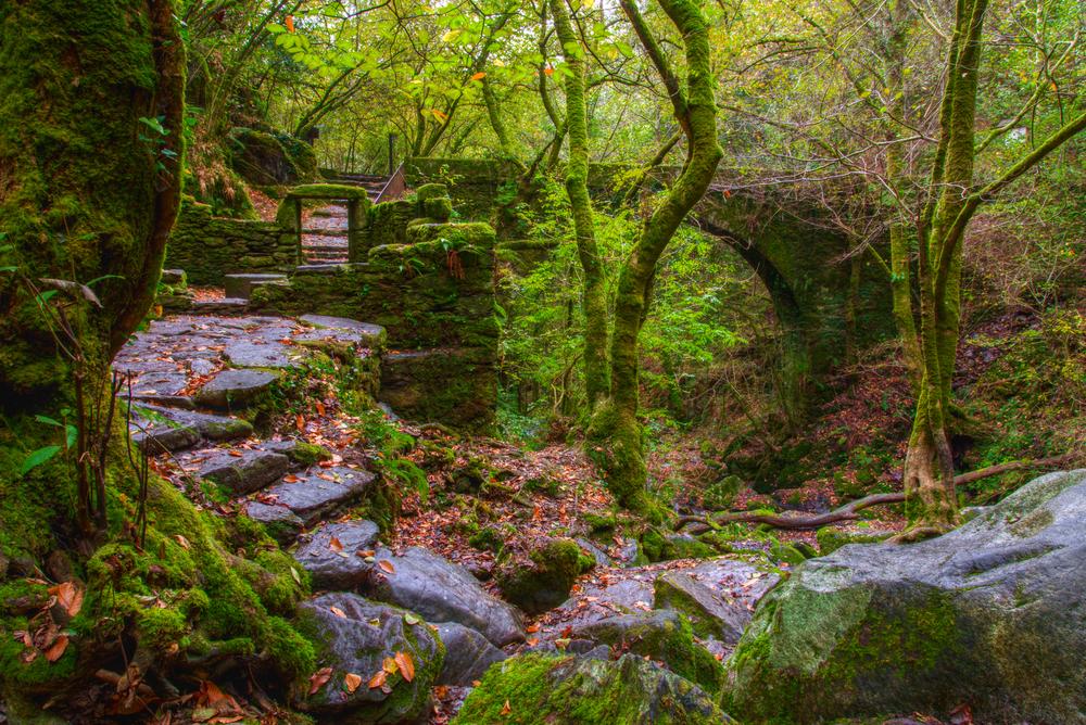 Fragas do Eume, uno de los parques naturales de Galicia