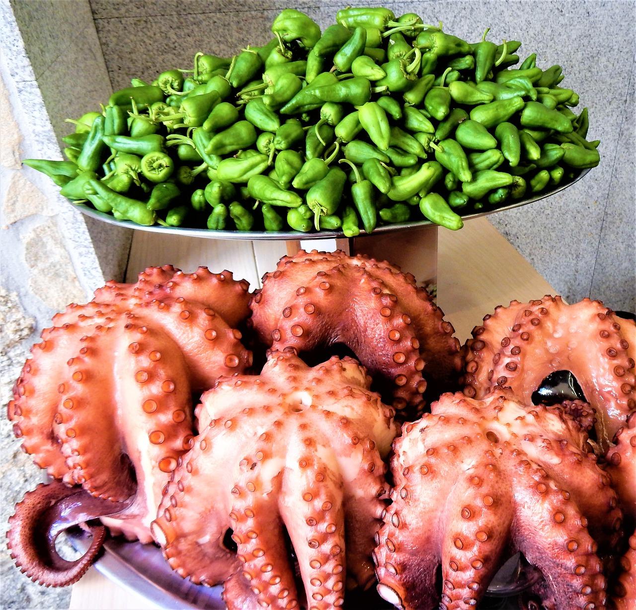 Pimientos y pulpo, productos autóctonos de Galicia